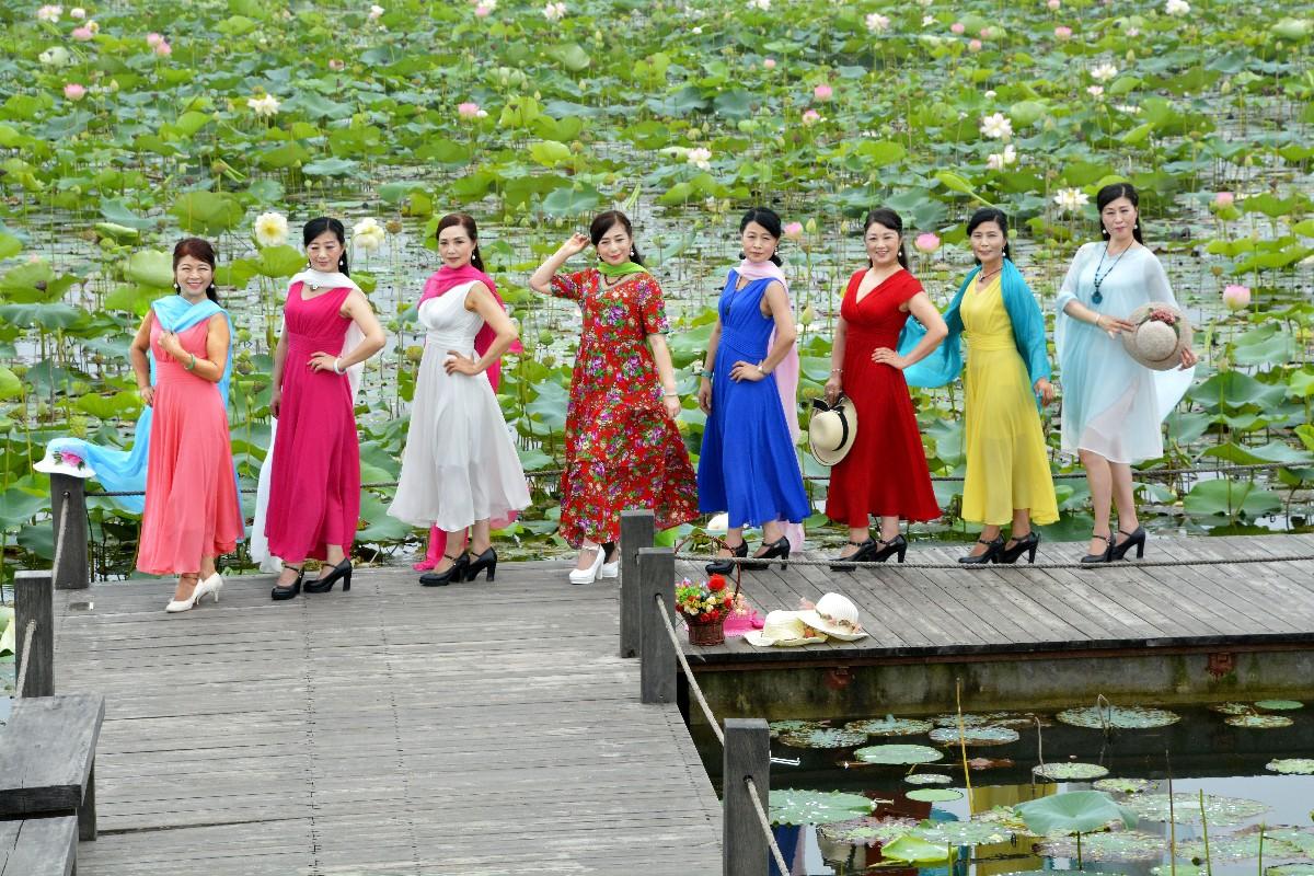 淮南图片网焦岗湖风景区创作采风游览活动纪实